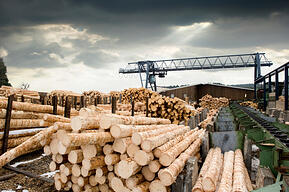 Lumber Prices Decline; What Does this Mean for Housing?
